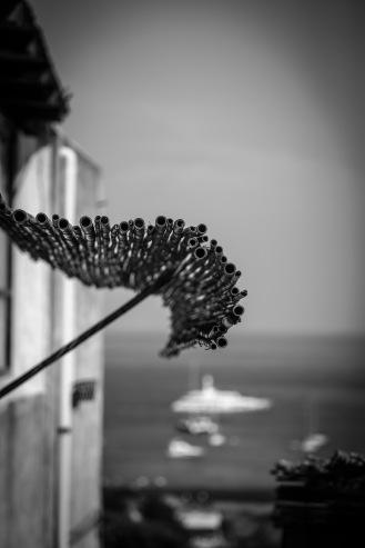 Untitled, Stromboli